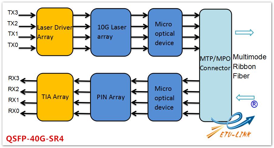 Optical Transceiver Manufacturer,QSFP-40G-SR4 VS QSFP-40G
